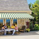 Awnings vs Canopies