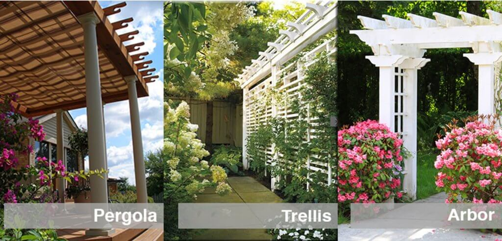 pergolas, trellises arbors difference